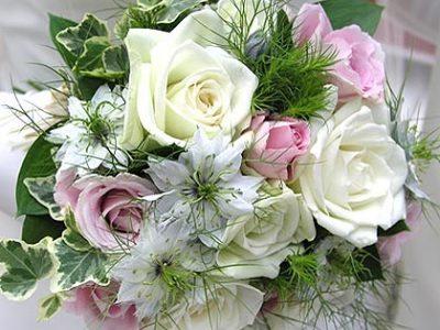 当方会員さん同士のビッグカップルのご成婚! おめでとうございます!