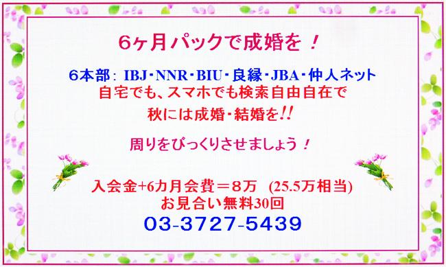 ★祝・ワードプレス新HP キャンペーン開始!